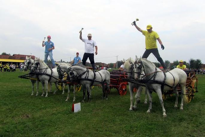 Konjički turnir u Donjim Andrijevcima