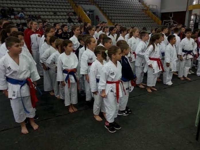 """Održan 22. Međunarodni memorijalni karate cup """"Slavonski Brod 2015."""""""
