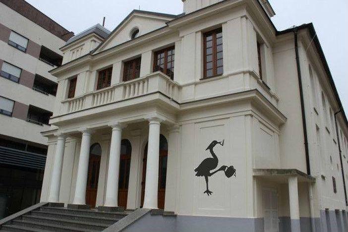 PIJANA ČAPLJA Što će biti u obnovljenom Hrvatskom domu?