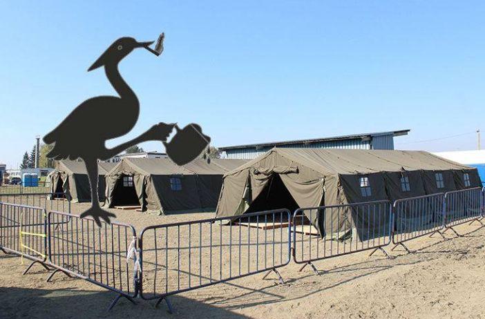 PIJANA ČAPLJA Tranzitni kamp na Bjelišu gotovo prazan, Ostojić poziva domaće migrante