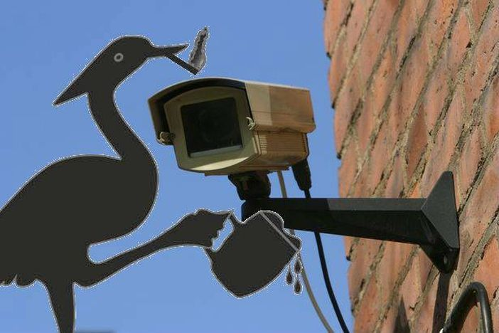 PIJANA ČAPLJA RTL otkupio prava za brodski video nadzor!