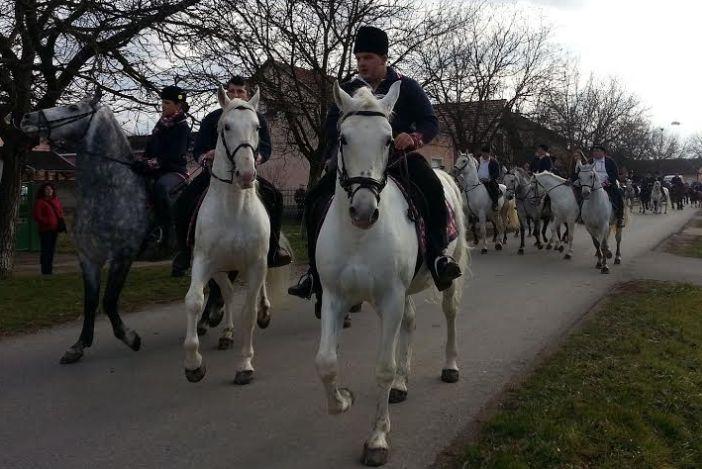 Pokladno jahanje u Tomici okupilo 50 konjanika iz Slavonije