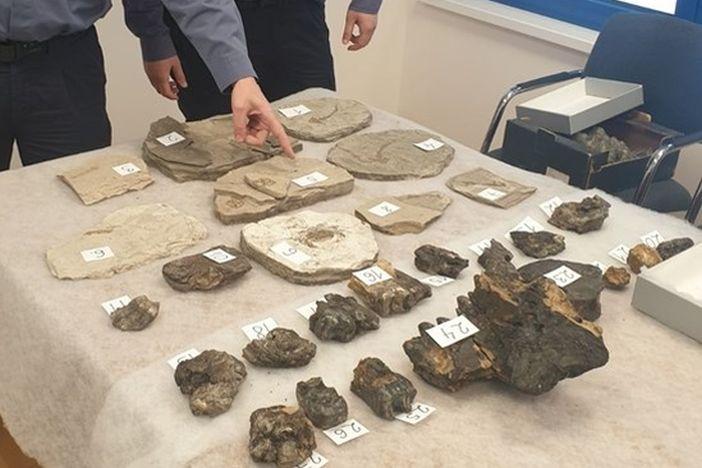 Na graničnom prijelazu Stara Gradiška pronađeni fosili neprocjenjive vrijednosti