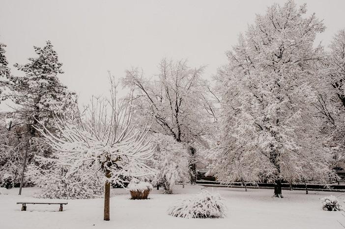 Jutro u Slavonskom Brodu; fotogalerija zimske idile