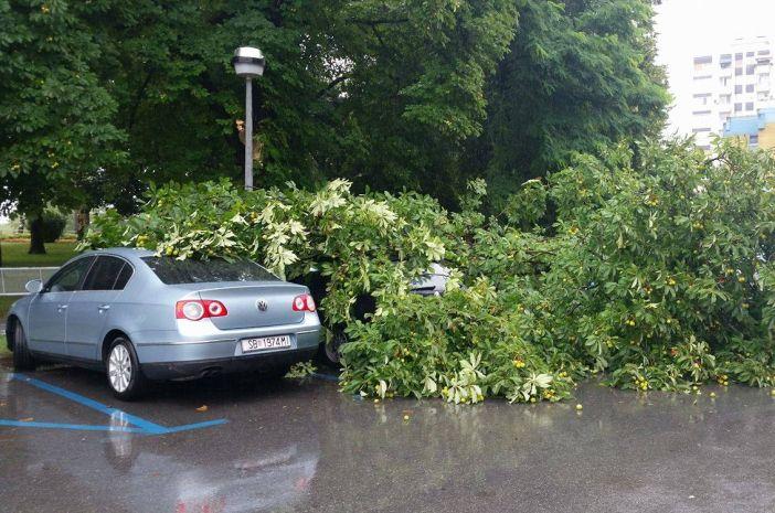 Oštećeni automobili tijekom nevremena