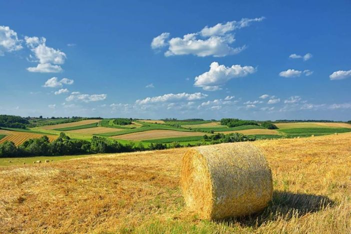 Poljoprivrednici, pozor! Objavljena dva nova natječaja