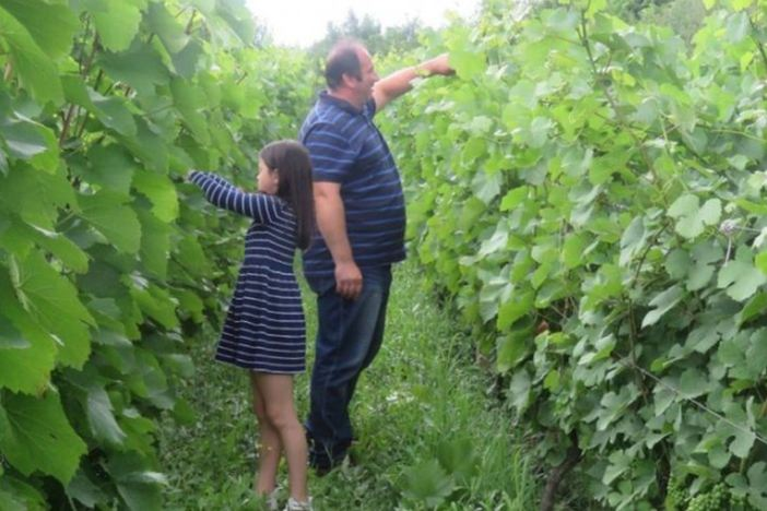 OPG Jedličko iz Cernika s novcem iz EU Fonda okreće se uzgoju lijeske i šljive
