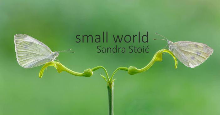 Izložba Small World