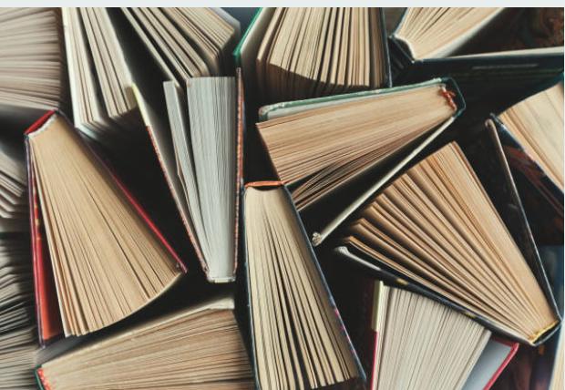 Što Brođani čitaju ovog ljeta?