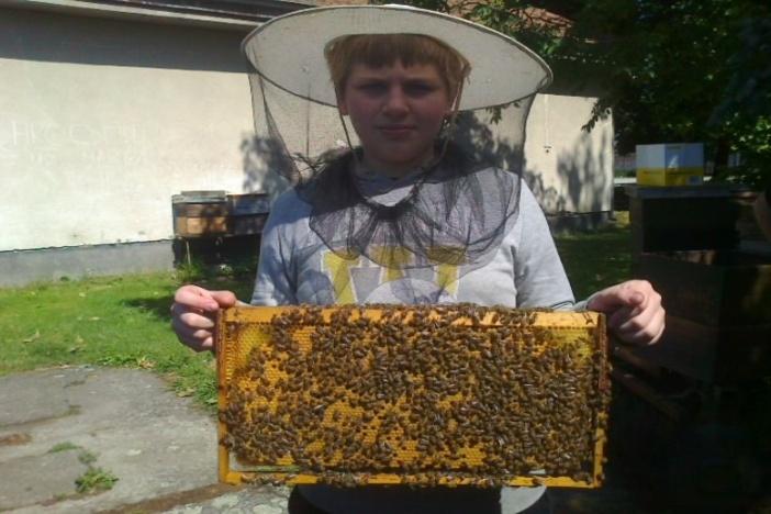 """""""Prevencijom do zdravlja kroz pčelarstvo kao izvannastavnu aktivnost"""""""
