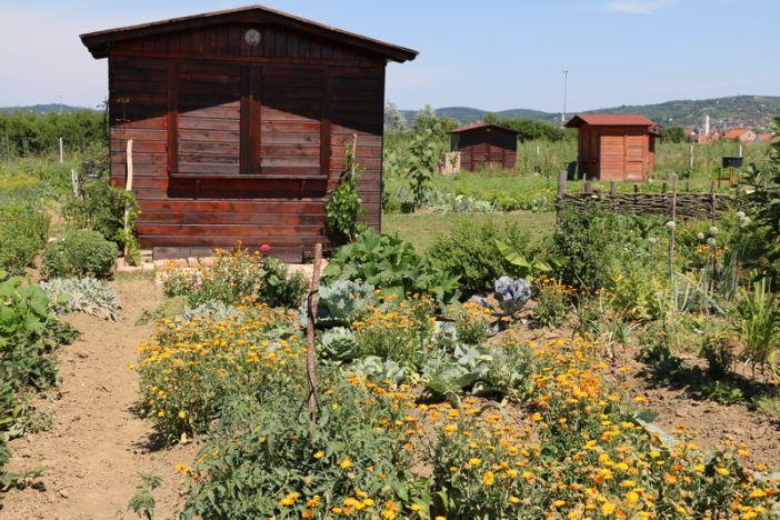 Iz Gradske uprave pozivaju sve zainteresirane građane da sudjeluju u projektu Gradskih zelenih vrtova