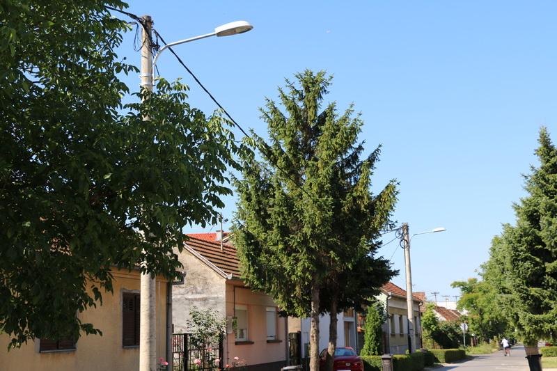 Nastavljaju se radovi na izgradnji i modernizaciji javne rasvjete na području grada