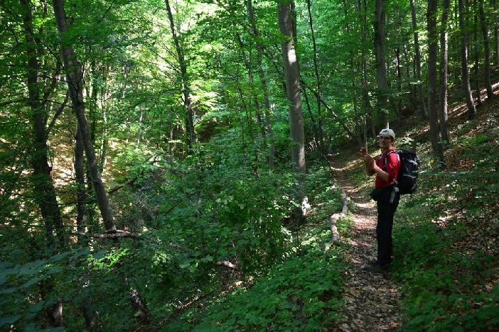 """Branitelj snimio film o šumi koju uređuje 16 godina:""""U Pljuskari pronalazim svoje utočište i inspiraciju"""""""