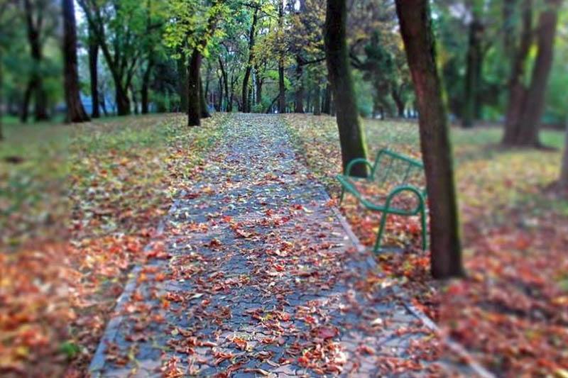 ANKETA Jeste li zadovoljni  sa parkom Klasije ?